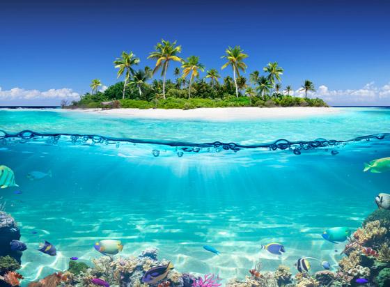 لماذا يجب أن تزور جزر المالديف الخلابة مرة واحدة على الأقل في العمر؟ صورة رقم 6
