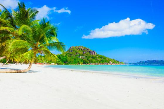 لماذا يجب أن تزور جزر المالديف الخلابة مرة واحدة على الأقل في العمر؟ صورة رقم 7