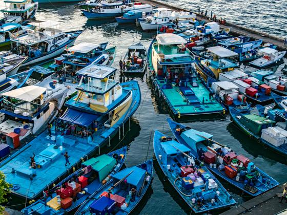 لماذا يجب أن تزور جزر المالديف الخلابة مرة واحدة على الأقل في العمر؟ صورة رقم 8