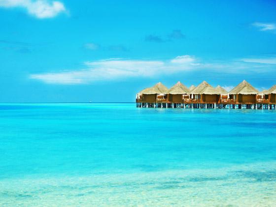 لماذا يجب أن تزور جزر المالديف الخلابة مرة واحدة على الأقل في العمر؟ صورة رقم 9
