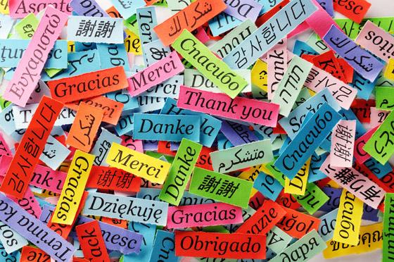 صورة رقم 6 - كم عدد الكلمات التي تحتاج إلى معرفتها لتتمكن من تعلم لغة أجنبية جديدة؟