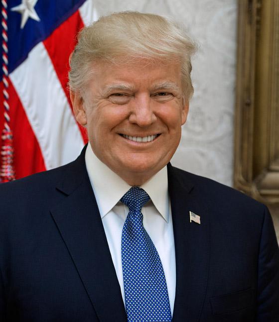 هل يمكن عزل الرئيس الأمريكي ترامب أو حرمانه من العمل السياسي؟ صورة رقم 1