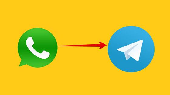 صورة رقم 1 - من واتساب إلى تليغرام.. خطوات سهلة لنقل محادثاتك