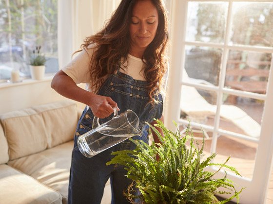 صورة رقم 2 - تموت نباتاتك رغم حرصك على العناية بها؟ 5 أخطاء شائعة قد تكون السبب!