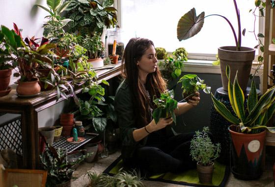 صورة رقم 5 - تموت نباتاتك رغم حرصك على العناية بها؟ 5 أخطاء شائعة قد تكون السبب!