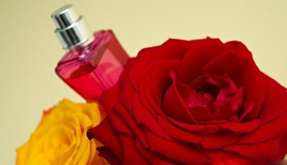 صورة رقم 4 - بالصور.. إليكم زيوت طبيعية تغنيكم عن المواد التجميلية والأدوية!