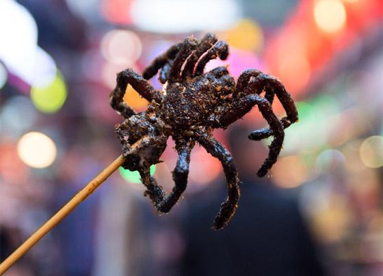 جبن باليرقات ومقبلات من العناكب.. إليكم أشهر الأطعمة الغريبة حول العالم صورة رقم 2