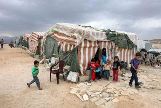صورة رقم 6 - لجأوا إلى المخيمات.. لبنانيون ينتقلون للعيش في مخيمات اللاجئين الفلسطينيين