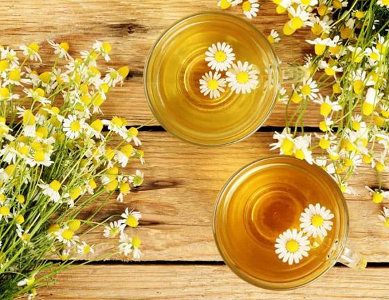 صورة رقم 4 - تعرفوا إلى أسرار الشخصية التي يكشفها نوع الشاي بالأعشاب المفضل لكم