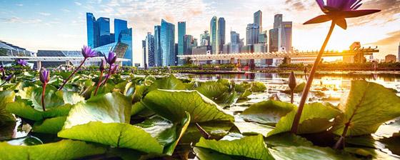 صورة رقم 1 - سنغافورة: ماذا نتعلم من البلد الآسيوي المولع بالنظافة لدرجة حظر العلكة؟