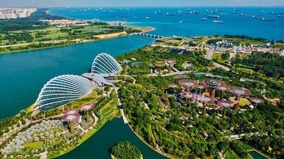 صورة رقم 2 - سنغافورة: ماذا نتعلم من البلد الآسيوي المولع بالنظافة لدرجة حظر العلكة؟