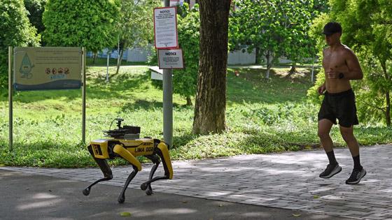 صورة رقم 5 - سنغافورة: ماذا نتعلم من البلد الآسيوي المولع بالنظافة لدرجة حظر العلكة؟