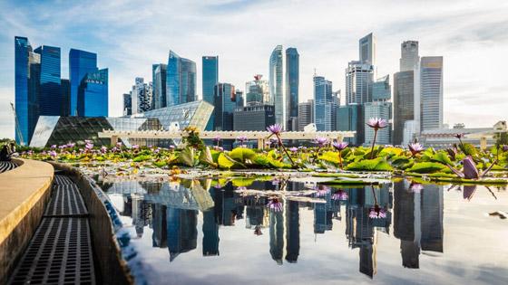 صورة رقم 7 - سنغافورة: ماذا نتعلم من البلد الآسيوي المولع بالنظافة لدرجة حظر العلكة؟