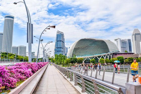 صورة رقم 9 - سنغافورة: ماذا نتعلم من البلد الآسيوي المولع بالنظافة لدرجة حظر العلكة؟