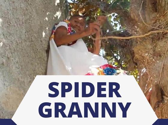 صورة رقم 11 - فيديو وصور عجوز مكسيكية (88 عاما) تتسلق الأشجار بلياقة مذهلة لتجني الفاكهة لتبيعها وتقطع الخشب