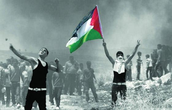 صورة رقم 6 - كاتب اسرائيلي يدعو الصهاينة للعودة الى بلادهم الاصلية