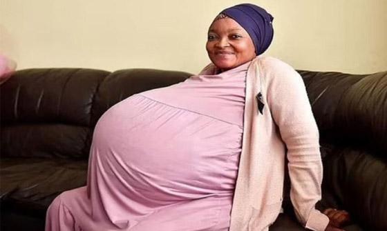 صورة رقم 3 - حامل