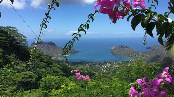 جزيرة الجنة.. نظرة داخل واحدة من أكثر المواقع النائية الخلابة في العالم صورة رقم 1