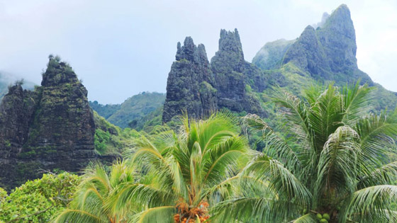 جزيرة الجنة.. نظرة داخل واحدة من أكثر المواقع النائية الخلابة في العالم صورة رقم 2