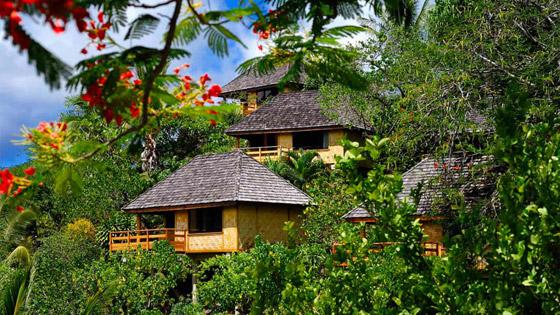جزيرة الجنة.. نظرة داخل واحدة من أكثر المواقع النائية الخلابة في العالم صورة رقم 3