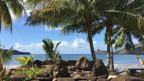 جزيرة الجنة.. نظرة داخل واحدة من أكثر المواقع النائية الخلابة في العالم صورة رقم 9