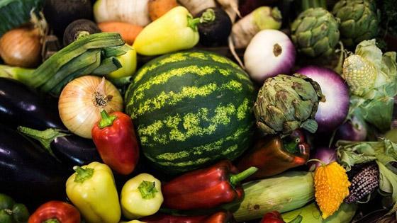 صورة رقم 1 - مواد غذائية لاستعادة صحة الكبد