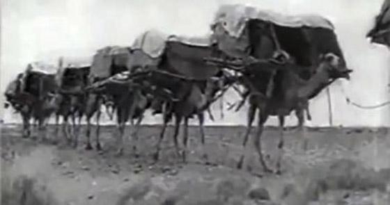 فيديو نادر لرحلة الحجاج إلى بيت الله الحرام عام 1356 هجريًا صورة رقم 1