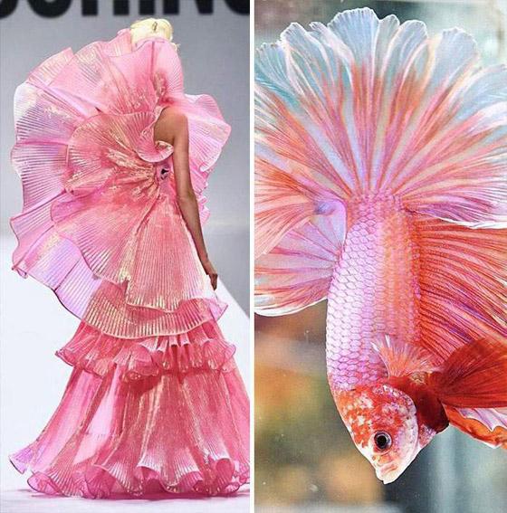 صورة رقم 4 - بالصور: إليكم أروع وأغرب صيحات الموضة المستلهمة من الطبيعة