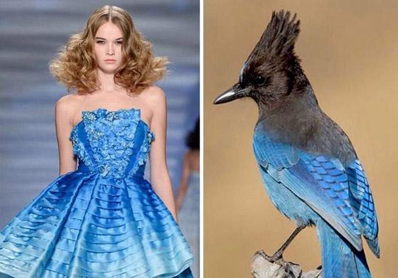 صورة رقم 9 - بالصور: إليكم أروع وأغرب صيحات الموضة المستلهمة من الطبيعة