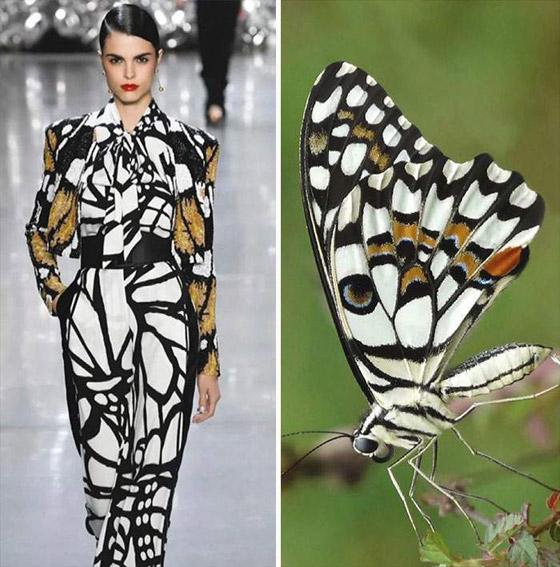 صورة رقم 10 - بالصور: إليكم أروع وأغرب صيحات الموضة المستلهمة من الطبيعة