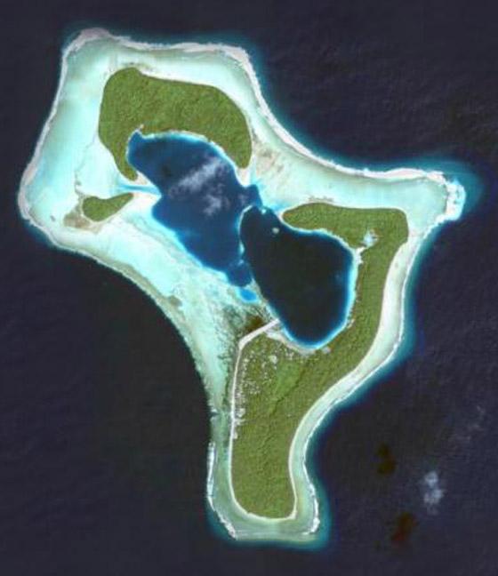 صورة رقم 5 - ينجيلاب.. جزيرة غريبة لا يرى سكانها إلا باللون الأبيض والأسود