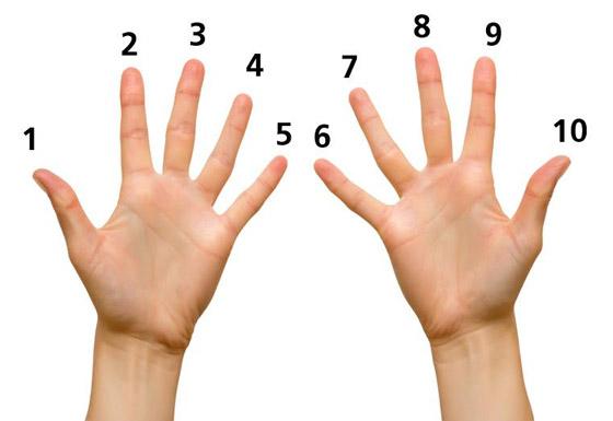 صورة رقم 6 - كيف تكشف طريقة عدكم على الأصابع عن هويتكم؟
