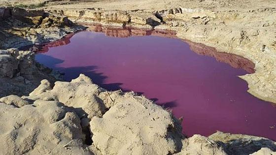 صورة رقم 2 - ضجة في الأردن.. بركة حمراء غريبة بجانب البحر الميت!