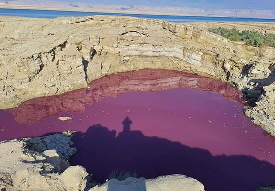 صورة رقم 4 - ضجة في الأردن.. بركة حمراء غريبة بجانب البحر الميت!