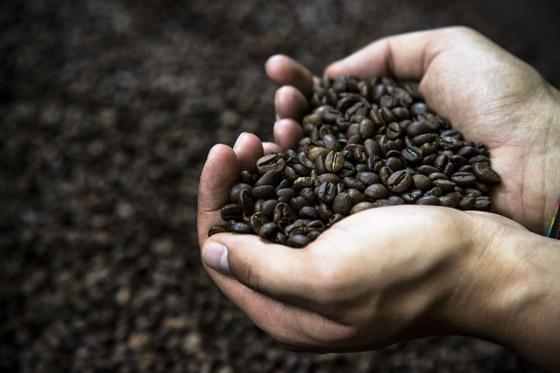 صورة رقم 2 - 5 فوائد للارتباط بشريك مولع بالقهوة
