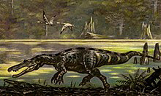 صورة رقم 2 - أسنان كبيرة وفك قوي.. ليبي يعثر على ديناصور بالصحراء