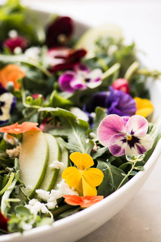 صورة رقم 10 - بالصور: تعرفوا إلى 10 زهور يمكنكم تناولها!
