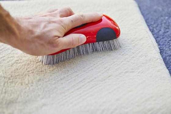 صورة رقم 4 - وصفات منزلية لتنظيف السجاد