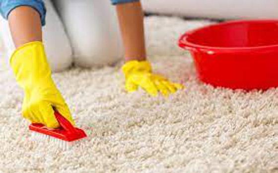 صورة رقم 6 - وصفات منزلية لتنظيف السجاد