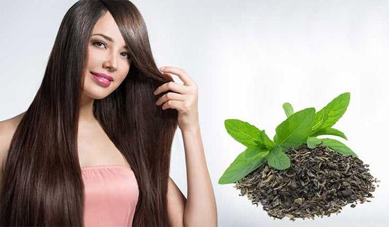 صورة رقم 3 - وصفات طبيعية سحرية.. بخاخ تكثيف الشعر بالشاي والزنجبيل