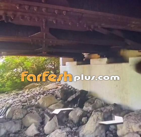 صورة رقم 2 - فيديو مرعب لمخلوق مخيف يختلس النظر من تحت جسر! ما هو؟