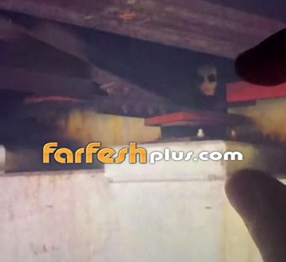 صورة رقم 3 - فيديو مرعب لمخلوق مخيف يختلس النظر من تحت جسر! ما هو؟