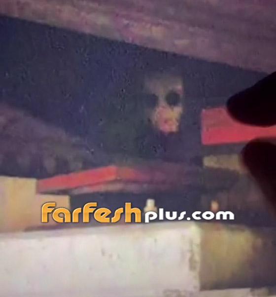 صورة رقم 4 - فيديو مرعب لمخلوق مخيف يختلس النظر من تحت جسر! ما هو؟