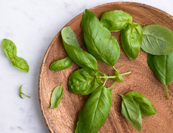 صورة رقم 7 - أعشاب الريحان: نبات شهير له تأثير سحري للحماية من الزهايمر والخرف