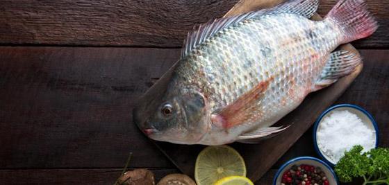 4 أنواع من الأسماك ستمنعك من إنقاص الوزن صورة رقم 3