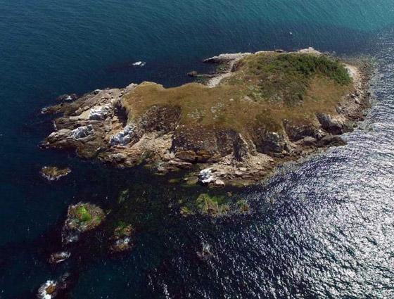 دخولها يحتاج لإذن رسمي من الحكومة.. تعرفوا على أخطر جزيرة في العالم صورة رقم 16