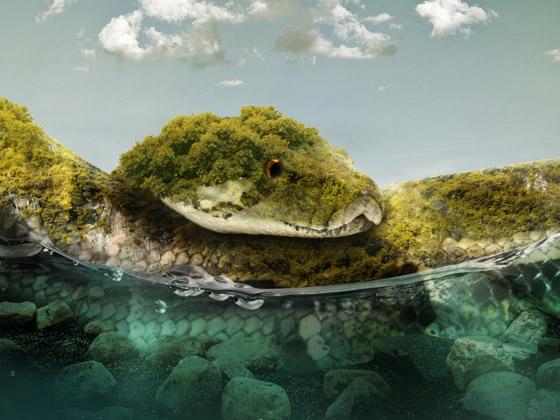 دخولها يحتاج لإذن رسمي من الحكومة.. تعرفوا على أخطر جزيرة في العالم صورة رقم 5