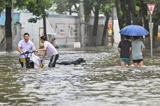 صورة رقم 4 - فيضانات كارثية تجتاح الصين.. قتلى بالمئات وخسائر بالمليارات
