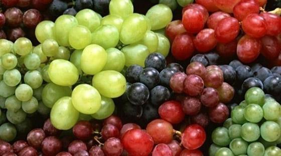 صورة رقم 2 - العنب الفاتح أم الداكن..أيهما أكثر فائدة للصحة؟