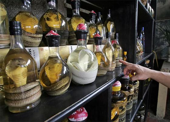 صورة رقم 2 - فطائر الدم والخفافيش المقلية.. إليكم أقرف 10 أطباق في العالم! صور